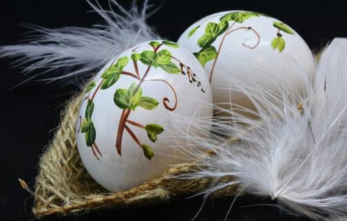 tojasfestes-haladoknak-11