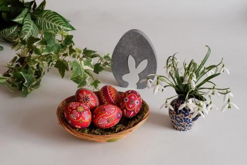 tojasfestes-haladoknak-24