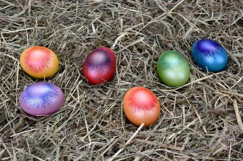tojasfestes-kezdoknek-24